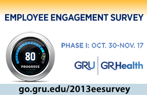employee survey 2013