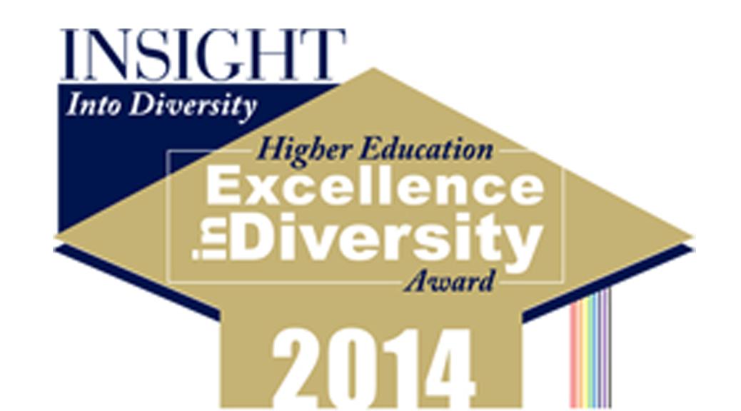 INSIGHT into Diversity-GReport image
