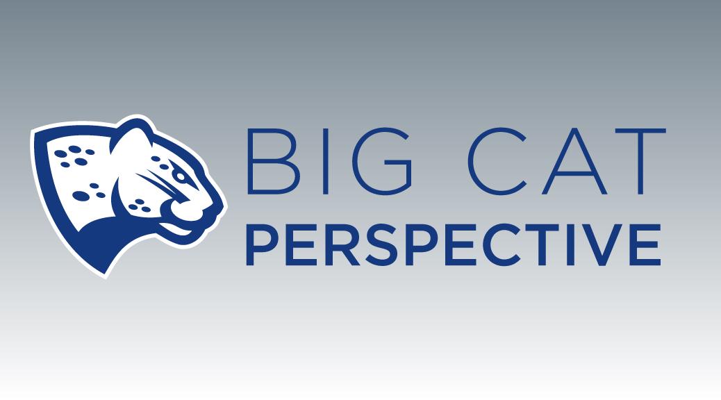 1038x576-big-cat-banner