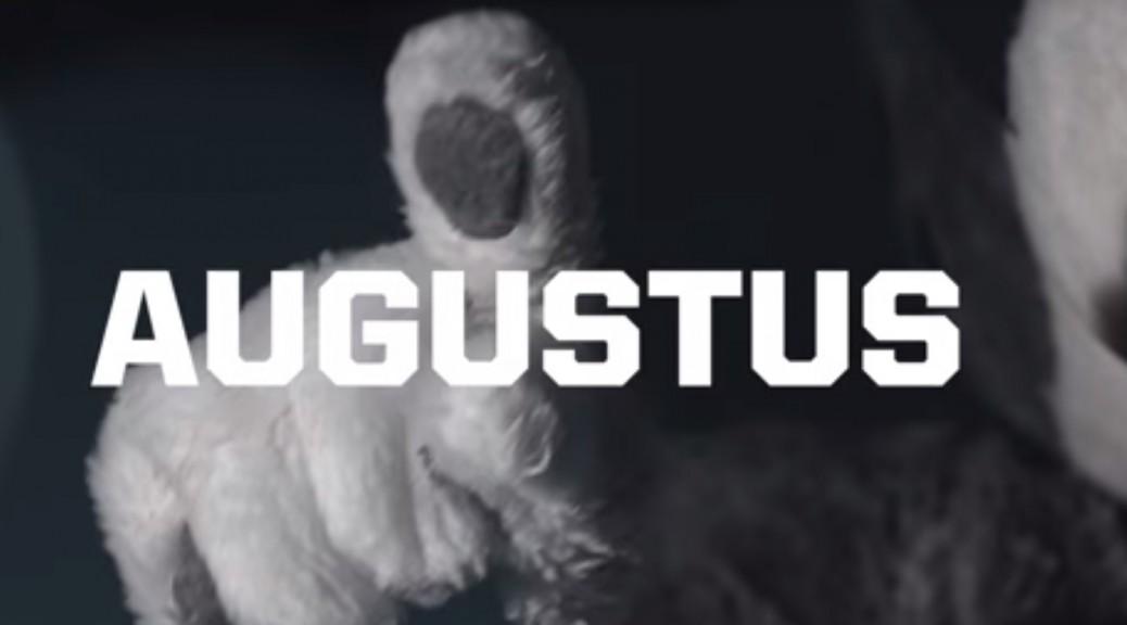 Meet Augustus